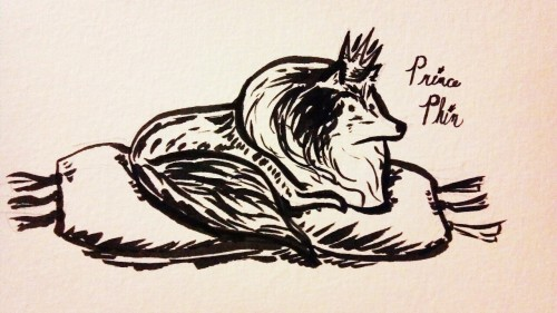 Doodle of one of my dogs: Phin. We like to joke that he's a little prince cause he likes perching on pillows and cushions.