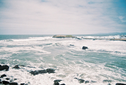 oceanux:  untitled by Bryce Cole on Flickr.
