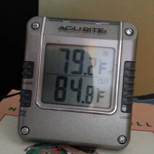 Bit warm in the shade. Not that I'm complaining. :)