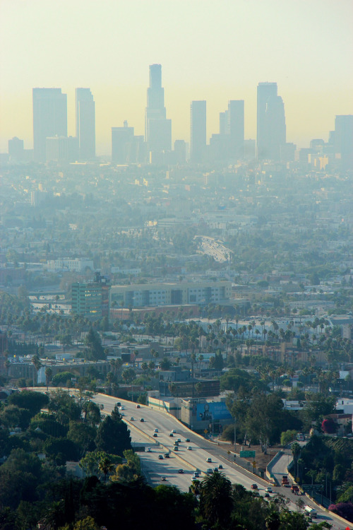 travelingcolors:  Los Angeles | California (by Eric Demarcq)  Been there…Done that…  Check out the SMOG!!!  Yikes.  Love you , L.A.!!!