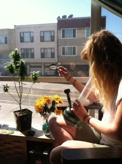 fuckyeahstonerchicks:  San Francisco living