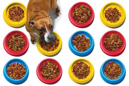 "The Chemistry of Kibble   The billion-dollar, cutting-edge science of convincing dogs and cats to eat what's in front of them.  By Mary Roach  Pet foods come in a variety of flavors because that's what humans like, and we assume pets like what we like. We're wrong. ""Despite the cryptic name and anonymous office-park architecture, the nature of the enterprise located at AFB International is clear the moment you sit down for a meeting. The conference room smells like kibble. One wall, entirely glass, looks onto a small-scale kibble-extrusion plant where men and women in lab coats and blue sanitary shoe covers tootle here and there pushing metal carts. AFB makes flavor coatings for dry pet foods. To test the coatings, the company needs to make small batches of plain kibble to put them on. The coated kibbles are then served to consumers: Spanky, Thomas, Skipper, Porkchop, Mohammid, Elvis, Sandi, Bela, Yankee, Fergie, Murphy, Limburger, and some 300 other dogs and cats that reside at the company's Palatability Assessment Resource Center (PARC), about an hour's drive from its St. Louis–area headquarters. Read more at PopSci.com"
