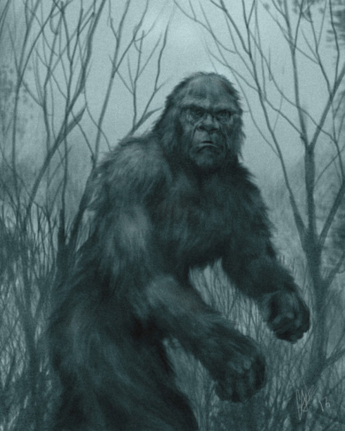 Bigfoot by ~chrisscalf