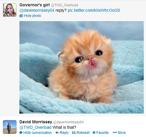 Best of David Morrissey's tweets [4 / ∞]