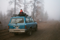 fog Oregon camp vibes photographers on tumblr lensblr original photographers land cruiser mostly nature