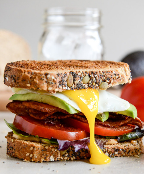Avocado BLT with Fried Egg