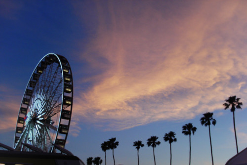 coachella 2013 photo diary - fashiontoast on We Heart It - http://weheartit.com/entry/60274753/via/vendelaeriksson   Hearted from: http://www.fashiontoast.com/2013/05/coachella-photo-diary-2.html?utm_source=rss&utm_medium=rss&utm_campaign=coachella-photo-diary-2