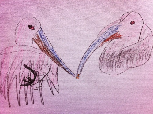 2013.5.5 Zoo sketching Pink pelican  Drawing by Bonchan