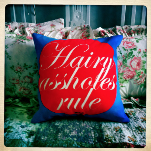 sissydudeomen2:  (via SISSYDUDE PILLOWS on my porch… in my living room… on my bed.) http://society6.com/Sissydude