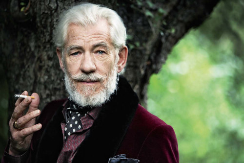 bohemea:  Ian McKellen by Phil Poynter