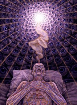 dougmenagh:  by Alex Grey