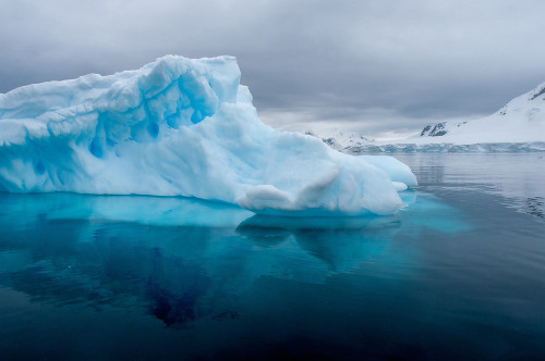 Iceberg in Paradise Bay, Antarctica. [Source]