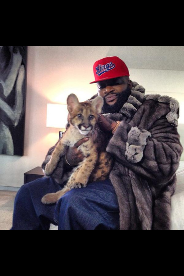 I don't like Rick Ross but this picture is pretty amazing.
