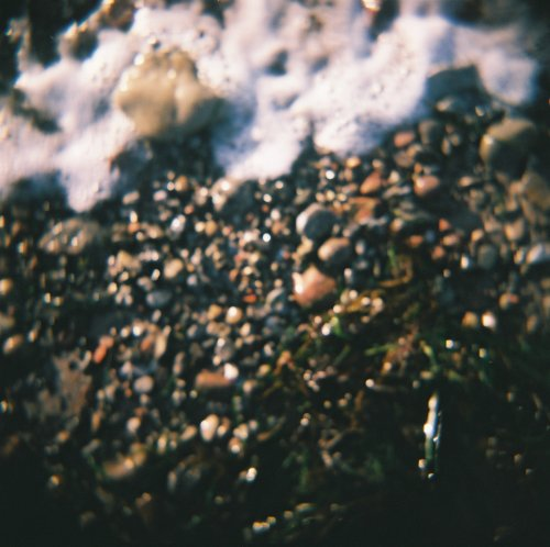 """Summerwave"" Holga 120 CFN. Photographed several years ago."