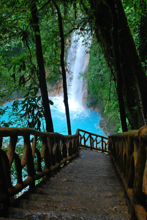 travelingcolors:  Río Celeste | Costa Rica (by Junglejims photos)  :O