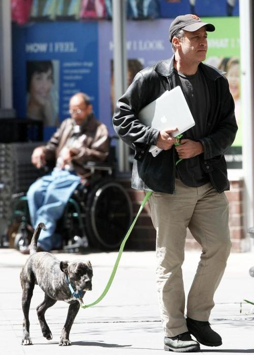 Jon Stewart walking his three-leg dog, Champ.