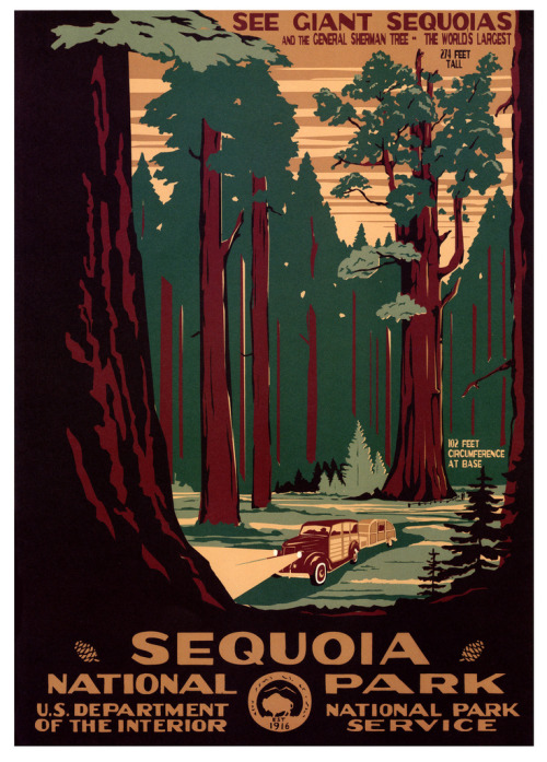 mudwerks:  Sequoia National Park (by paul.malon) Poster by Doug Leen & Brian Maebius