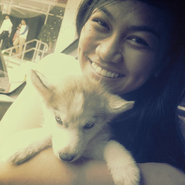 Big hug for le baby husky! Haha. :3 #puppylove #syberianhusky #petlove #cutie #molo #molome (Photo taken and uploaded via MOLOME )