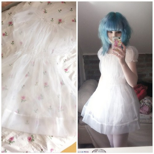 mashyumaro:  My sheer dress finally arrived today, I'm so in love with it! I want one in every colour \(//∇//)\ I bought it from shop SYNDROME ♥