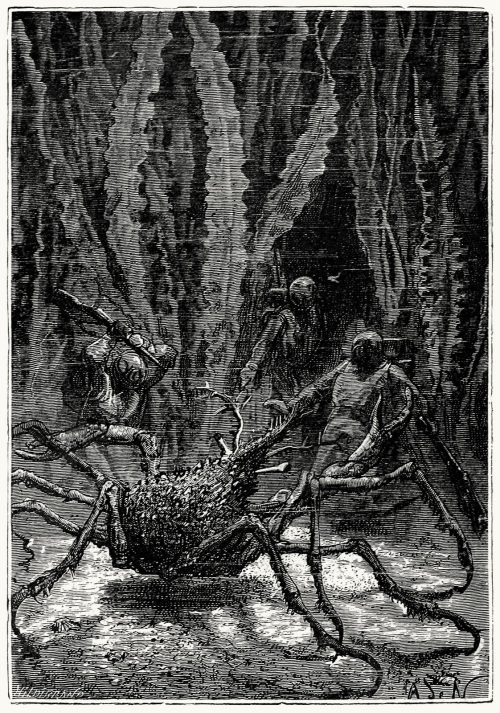 A monstrous sea-spider.  Alphonse de Neuville, from Vingt mille lieues sous les mers (Twenty thousand leagues under the seas), by Jules Verne, Paris, 1871.  (Source: archive.org)