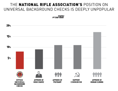You wouldn't believe the things that are more popular than the NRA's position on gun safety (or, actually you might).