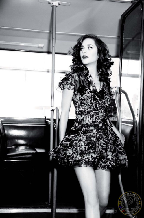 suicideblonde:  Marion Cotillard photographed by Ellen von Unwerth   not an umbrella