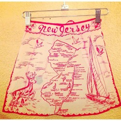 schoolofvintage:  More new old stock aprons! There are about ten+ of each kind available in the shop.  (at School Of Vintage)  I think I need this apron.