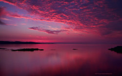 a-filipaalagoa:  Pink Skies Over the Ocean on We Heart It. http://weheartit.com/entry/62184736