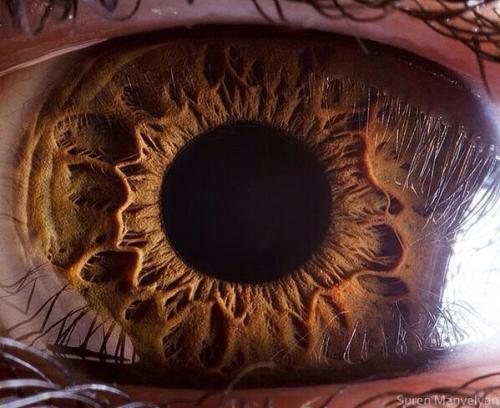 Amazing close up of a Human Eye.