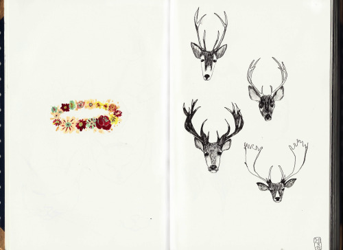 Dear deer…training deer heads***sketchbook n#7
