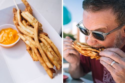 "Would certainly go to the State Fair of Texas to try this ""fry dog"". Lots more to like in this great round up and review of everything edible at this year's event."