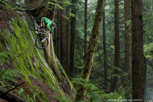 "Pinkbikes ""Top 100 Photos of the Year"""