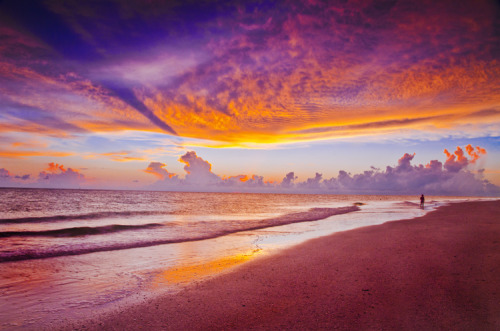 sundefined:  Sarasota, Florida sunset (by photogg19)