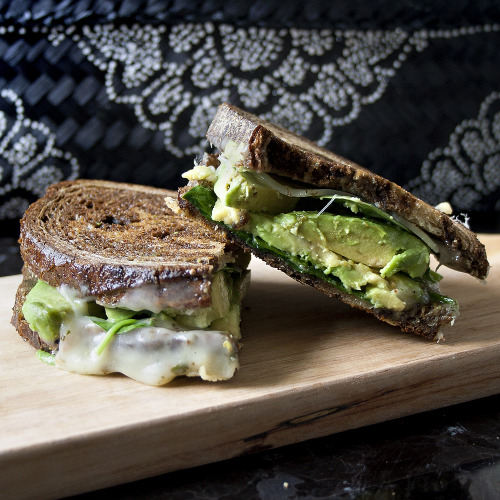 gnarlyxcat:  titlefightclub:  graceinfood:  avocado grilled cheese  oh my godddddddd  i made this and it was glorious