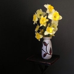 #happy #daffodils #garden #now #yellow #nwct #newengland #mcm #vase #flowerarrangement #flowers