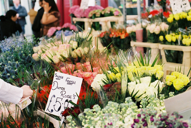 devised:  flowers of london by fieldguided on Flickr.