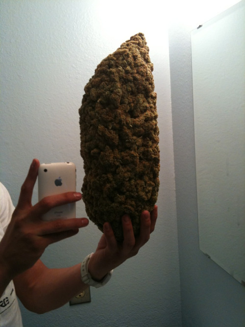 kokesmush:  sneakergenius23:  1 Big Ass Bud  It's just compressed.  hahahhahha woah
