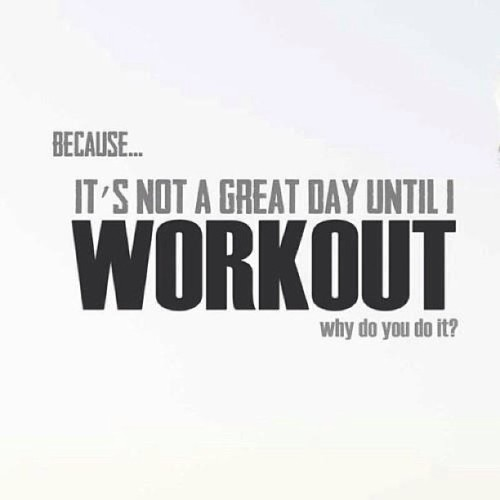primalmuscle:  #Question Why do you workout? #primalmuscle #motivation #sport #sports #active #fun #fit #fitness #instasport #gym #training #workout #exercise #train #justdoit #health #healthy #win #instaquote #loveit