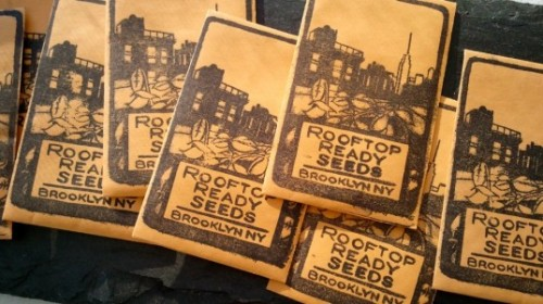 Rooftop Ready Seeds Offers City Gardeners a Line of Locally-Grown Seeds Tailored for Urban Planting