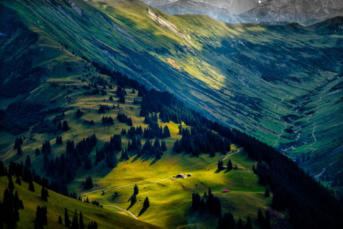 woodendreams:  The Bernese Oberland, canton of Bern, Switzerland (by Axel Polt)