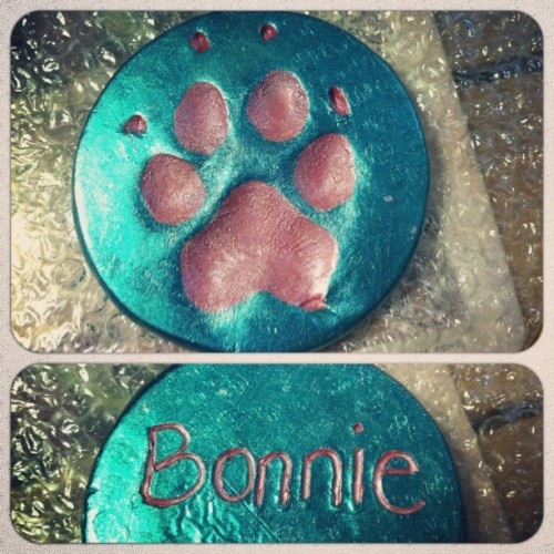 I think one of the vet techs made this for us in remembrance of Bonnie pup. Very sweet of them to do & we have been going there for over 12 years.