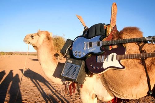 tinariwen in tour