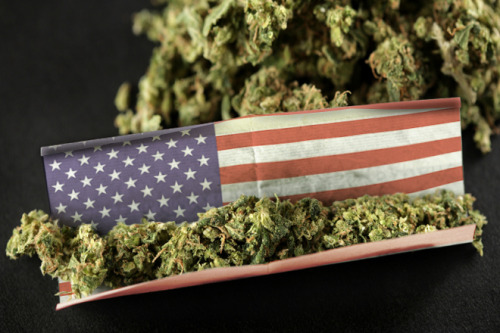 prop-215:  what-a-slutbag:  Merica  I bet Obama uses these papers