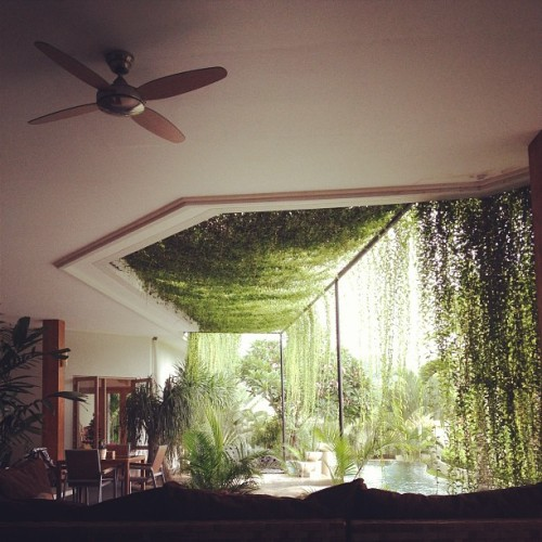 meditatingmoonbeams:  fawliah:   my friends house :)      fuck