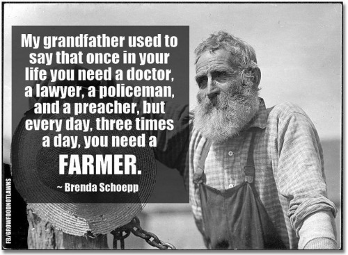 We need farms & farmers.