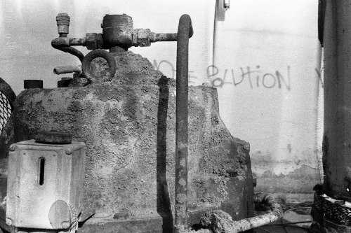 Solution Olympus OM1n / Zuiko 35mm f2.8 / Fomapan 400 (unexpected texture)