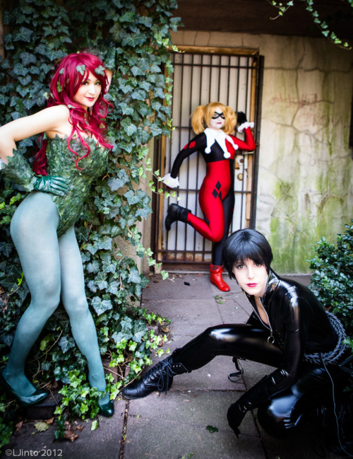 jointhecosplaynation:  Gotham Sirens - Batman by *Mostflogged Poison Ivy: MostfloggedCatwoman: Namiko101Harley Quinn: LoveJoker Photo by LJinto
