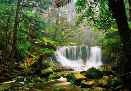 Mount Field National Park, Tasmania