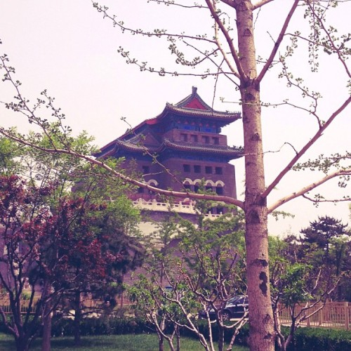 🏯🍃 (at 天坛 Temple of Heaven)