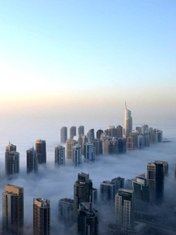 thevuas:  Dubai, Morning Fog [via]
